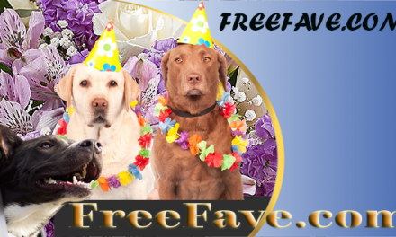 free dog food samples